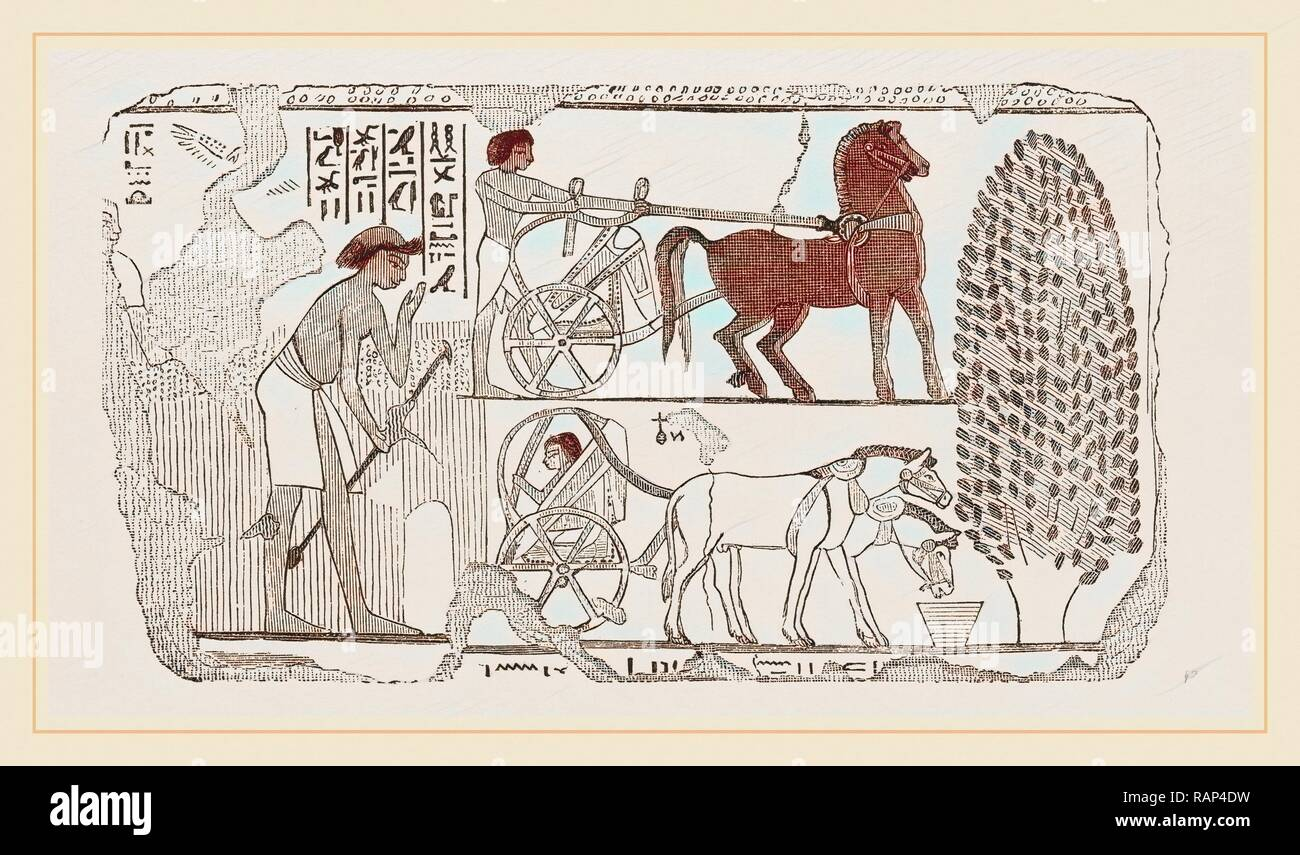 KV62 (KV als Akronym für Kings Valley) bezeichnet in der Ägyptologie das Grab des.
