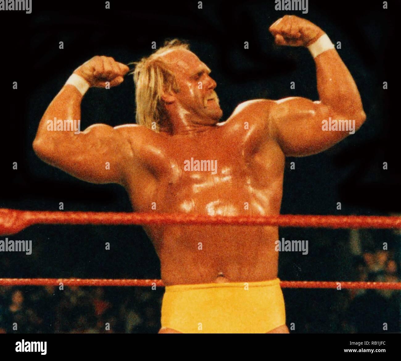 Hulk Hogan datiert Geschichte