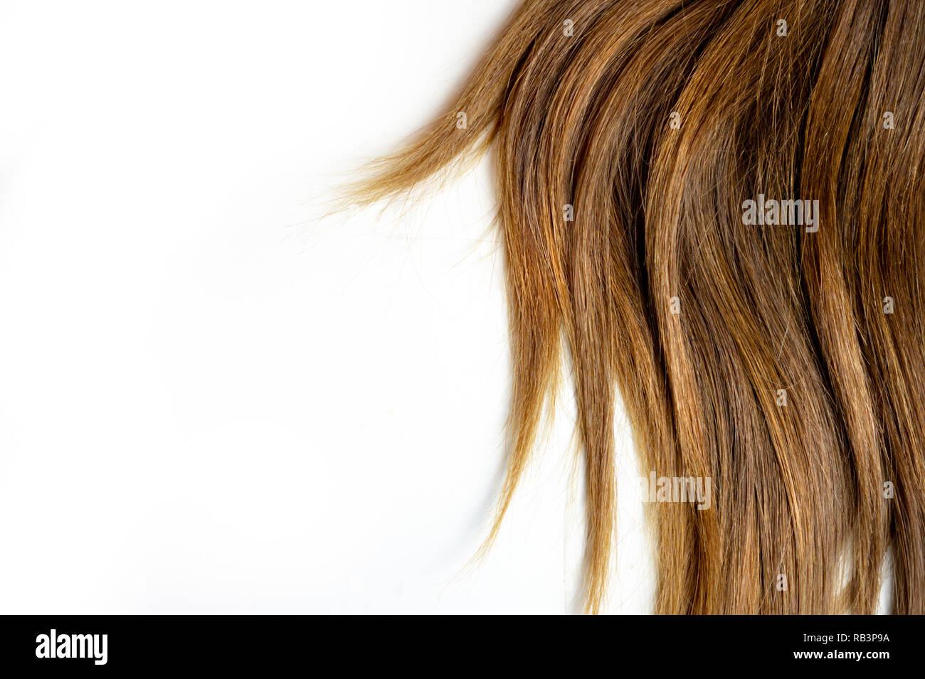 Lange Braune Glatte Haare Auf Weißem Hintergrund Isoliert