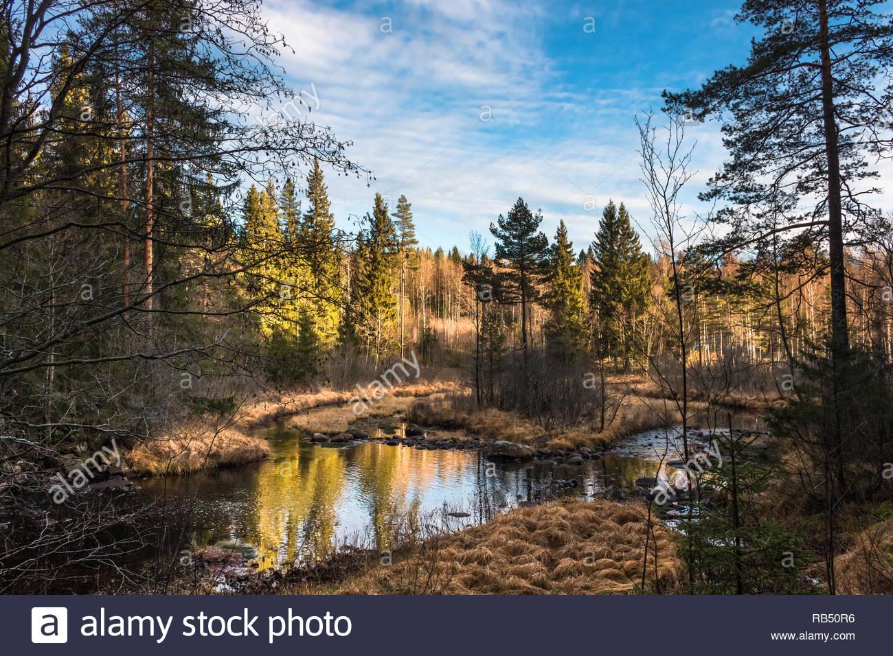 Herbst Landschaft in Schweden Stockbild