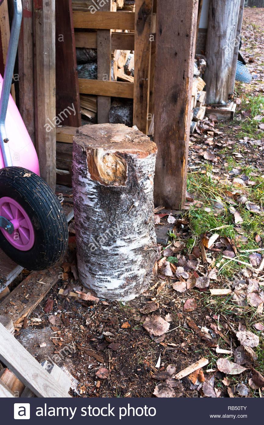 Vorrat an Brennholz gestapelt und gehackt Stockbild