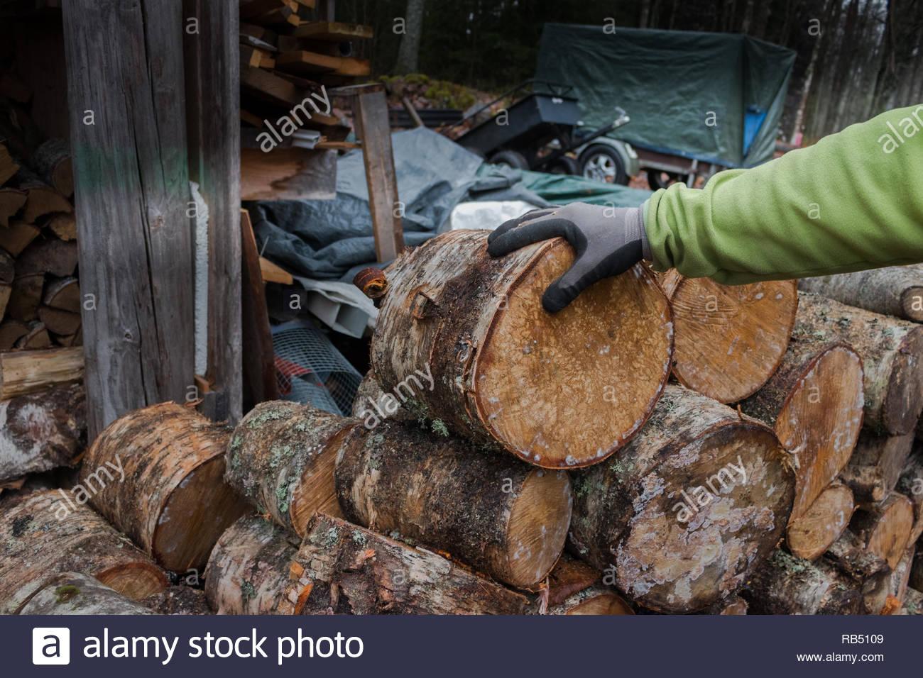 Männliche Hände mit Handschuhen zu einer hölzernen Anmeldung von Brennholz halten Stockbild