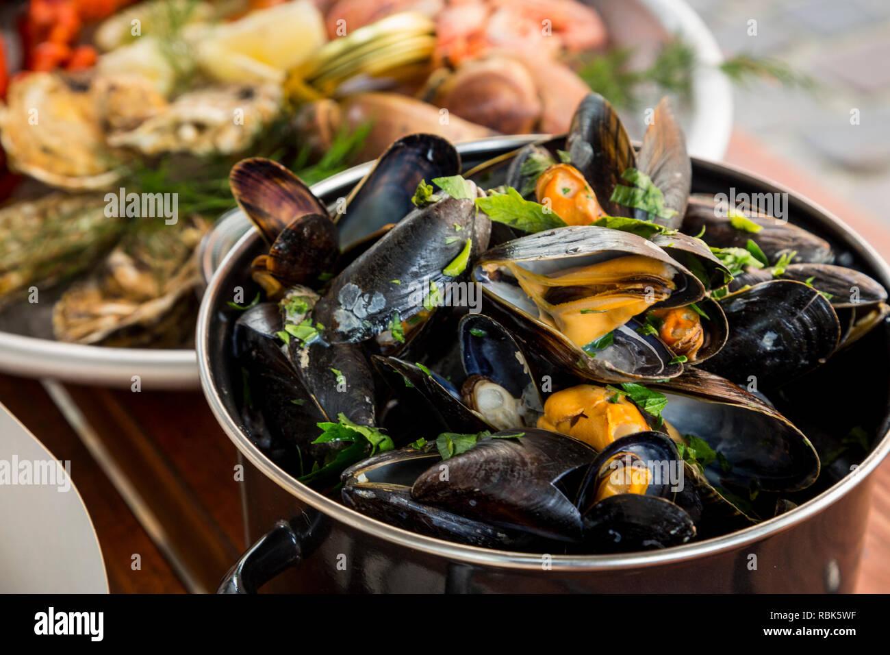 Lecker und nachhaltige Muscheln, direkt vom Fischerboot auf den Tisch im Restaurant Stockbild