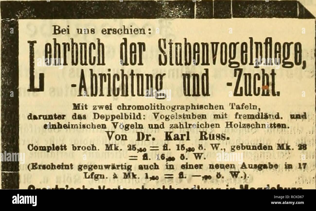 """. Gefiederte Welt. Vögel. Mit z-wei ohromolitiiogruphlschen Abb. auf Tafeln, dftrunt""""r das Deppelbild: Yogelstiiben mit fremdlibTid. Oad einheimischen Vögeln und zahlreicben Holzschnitten. Von Dr. Karl Bugs. Oomplett brach. Uk. ! 16 Â""""> = Fl. 16^K.W., gebunden Mk.T"""" = Fl. 1. """"^Â"""". W. (Bnohetnt gegeuwilTtig euch in einer neaeu Aujgabe ifn Es lifgu. k Mk. 1 Â"""", = Fl. Âm 0. '^â) Creutz'sche Verlagsbuchhandlung Magdeburg. Feiten fd^ öne © änget, Stüdt 4: Ji, S © tüdl 10 Jt. [324] âOrnls iEIngelmann Kttstrlh (tt.).. Bitte beachten Sie, dass diese Bilder aus gescannten Seite Bilder extrahiert werden, Stockbild"""