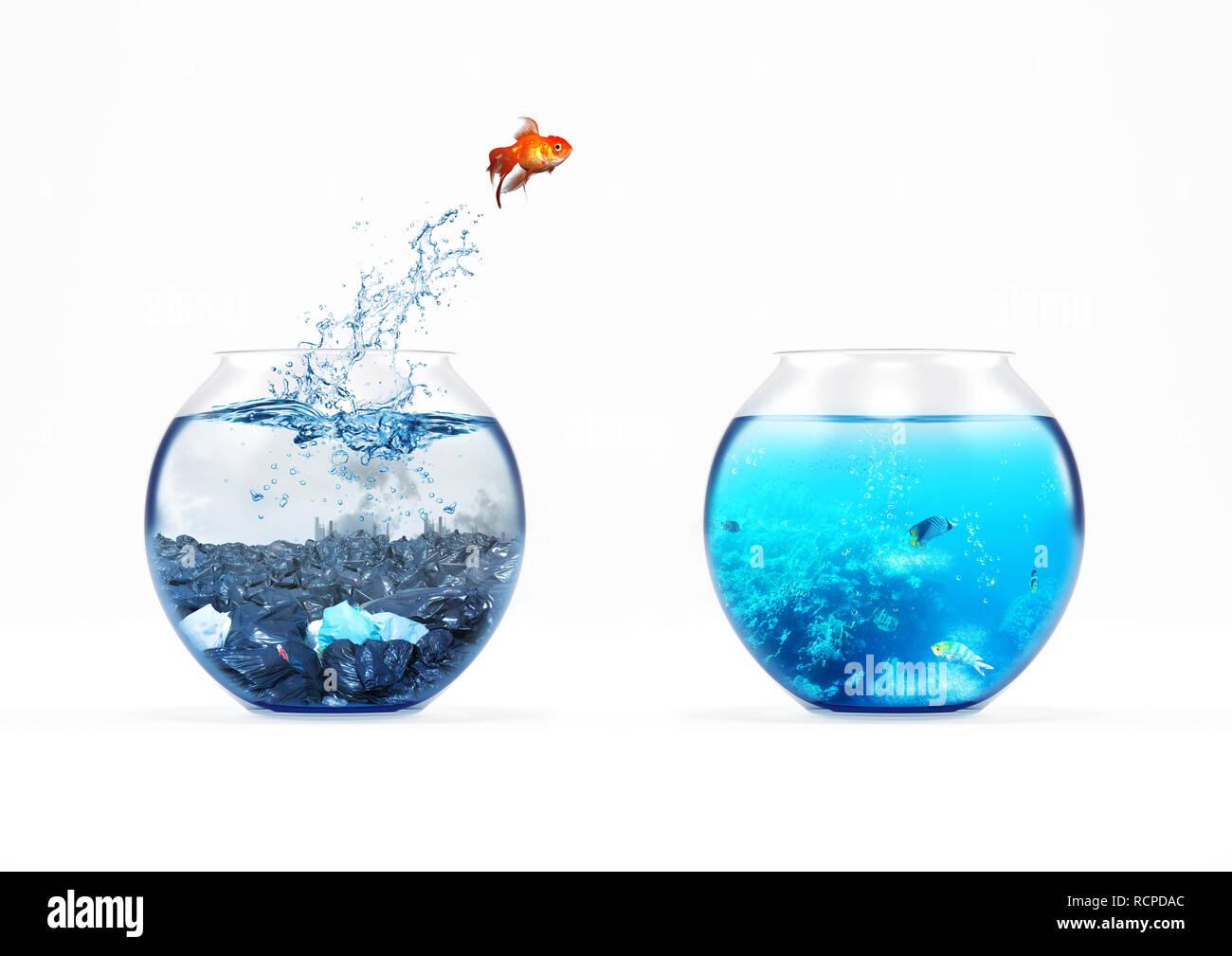 Verbesserung und beweglichen Konzept mit ein Goldfisch springen von einem schmutzigen Aquarium zu einem sauberen Ein Stockbild