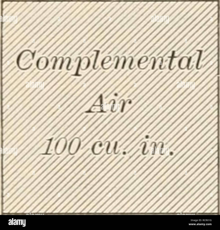 5377618ebb . Elemente der Biologie; ein praktisches Lehrbuch Korrelation von Botanik,  Zoologie, und der menschlichen Physiologie. Biologie.