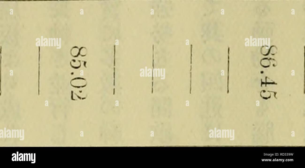 """. Dbutsugaku Zasshi. Zoologie; Zoologie. € € Èä¹ae¾ä¹ç èªéå - """"ç© å'74 7 ã ã² 77 78 80 81 ã¦-à-ã¾ ã¾ à 5 87 ã¾ ã ã"""" ã"""" 93 9 ã² ã¾. 74 67.93 6 ç · © 71.31 75. (J 1 7 7. à 80.71 81.94 SSI sãä'.07 äºã"""". 4 G 87.99. 83,4 G 8 Ich ã""""L~ 30 31 ϼä"""" 1 3 ã² ã ã ã ã ã 97 98 100 ã^ ã² 34 Iöw 98.39 100,8 7 £ y à 44 4 ç 京¬ äºè¨ SIK-viny--t-Lui clulntity Wasser für reducelc ä'volucles Eine stärkere SJPil - es zu einem Geist der Lcwer Stteng;.CO CO ao OK ã ã² ã² ã² ã ã² C' 1 00 CO ã²' [iniool^ Ob o ã² ã-äº ã ã²-CD """"a o Ho c-io-X CO 00 O """"w00*^ bo Ao 00 OS oo â ¢ o oc o CO à l'* ai ã in tsO cc Co ij. Ã"""" oï¼ 'a o oo cn CO: o CO. Stockfoto"""
