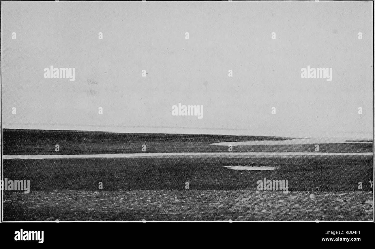 Bericht der Kanadischen Arktis Expedition 1913 18