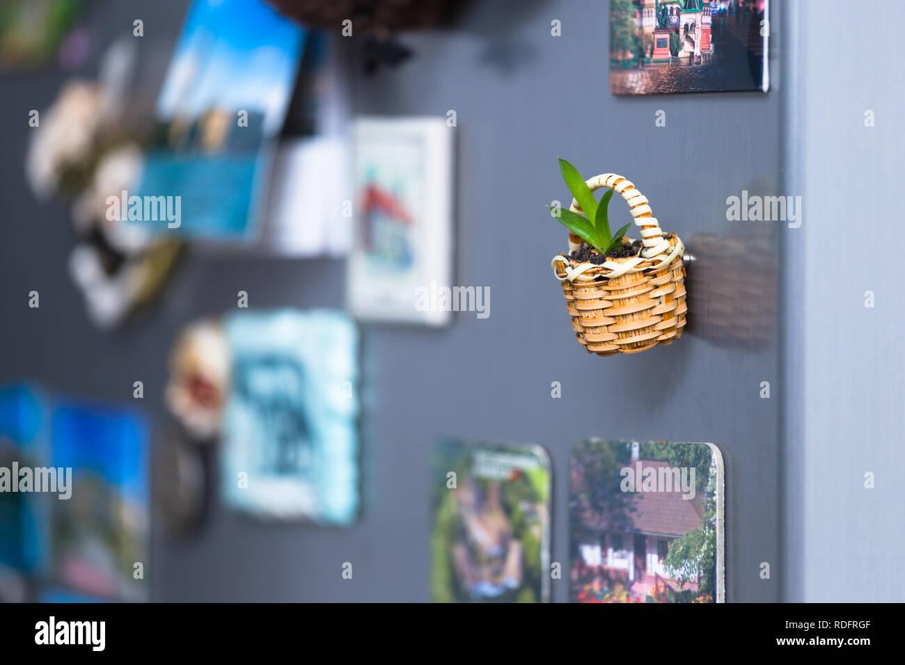 Kühlschrank Korb : Kleinen korb mit magneten am kühlschrank einer pflanzmaschine für