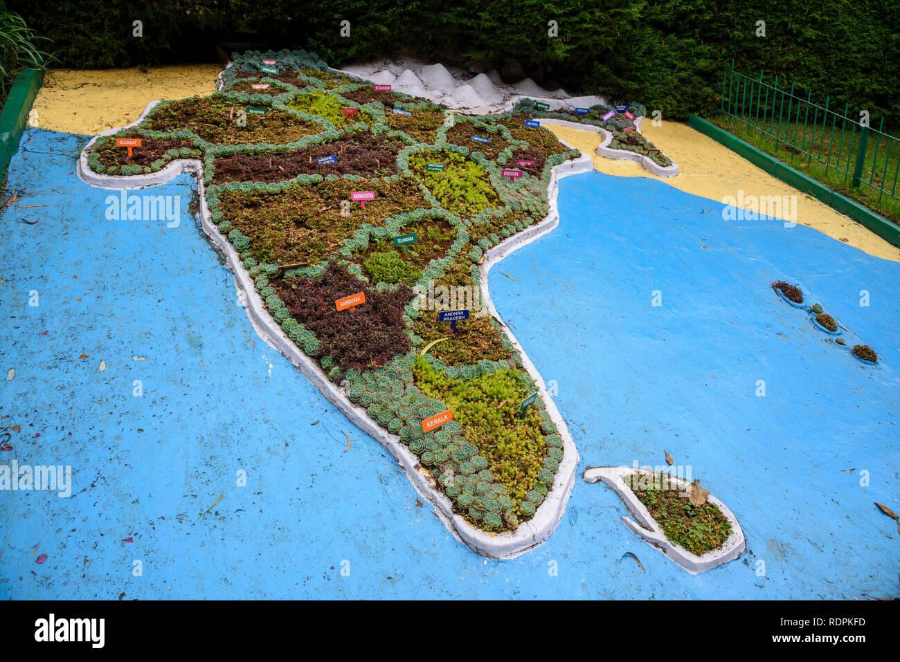 Botanische Gärten, Ooty, Nilgiri Hills, Tamil Nadu, Indien Stockbild
