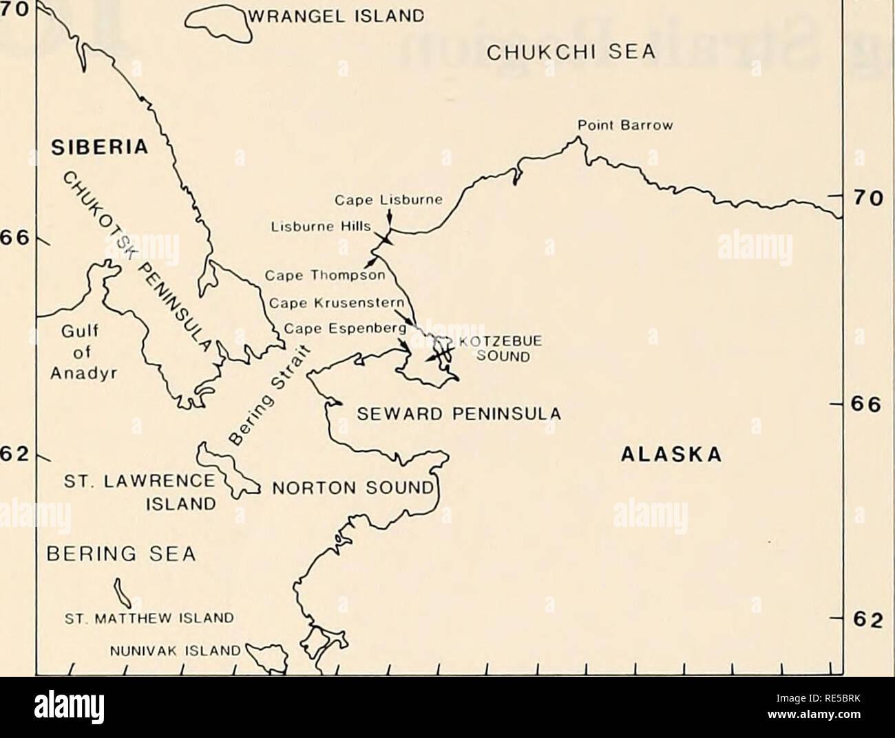 Die östliche Beringmeer Regal Ozeanographie Und Ressourcen