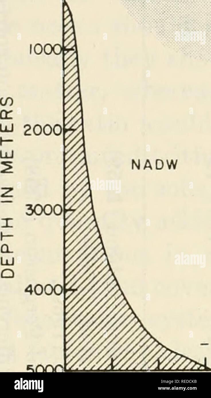 Radiokarbondatierung wird verwendet, um das Alter von