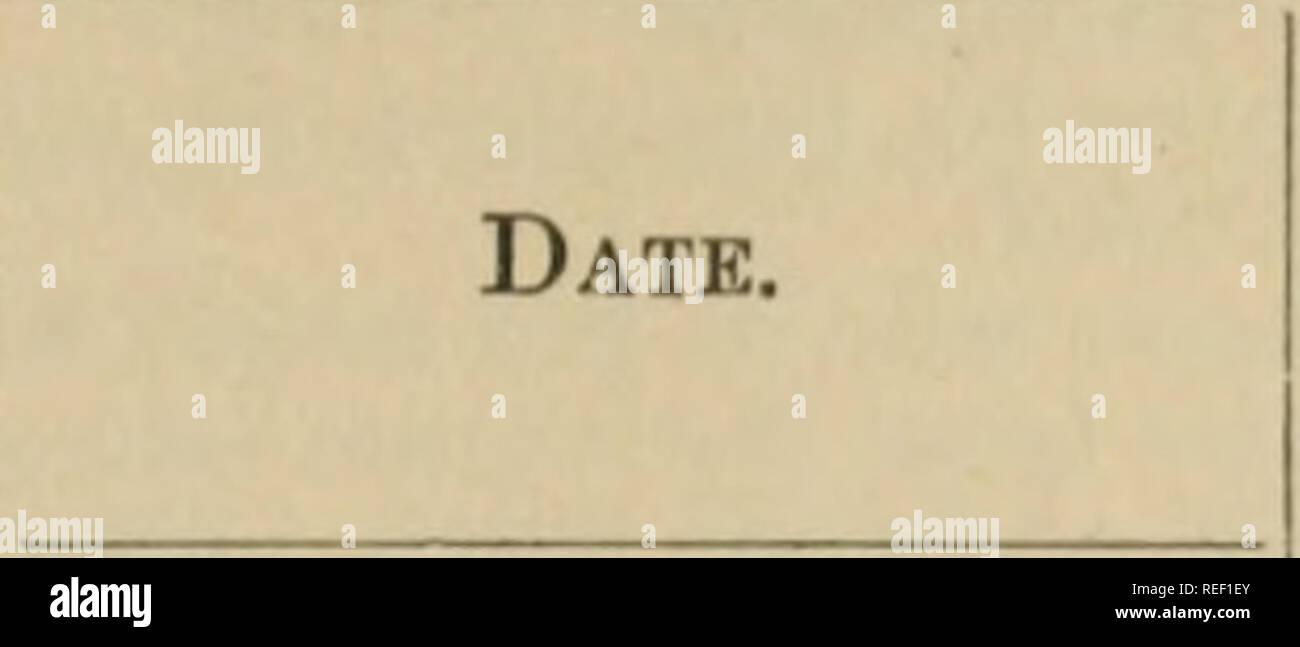 Kleine Dating-Gesetze in utah