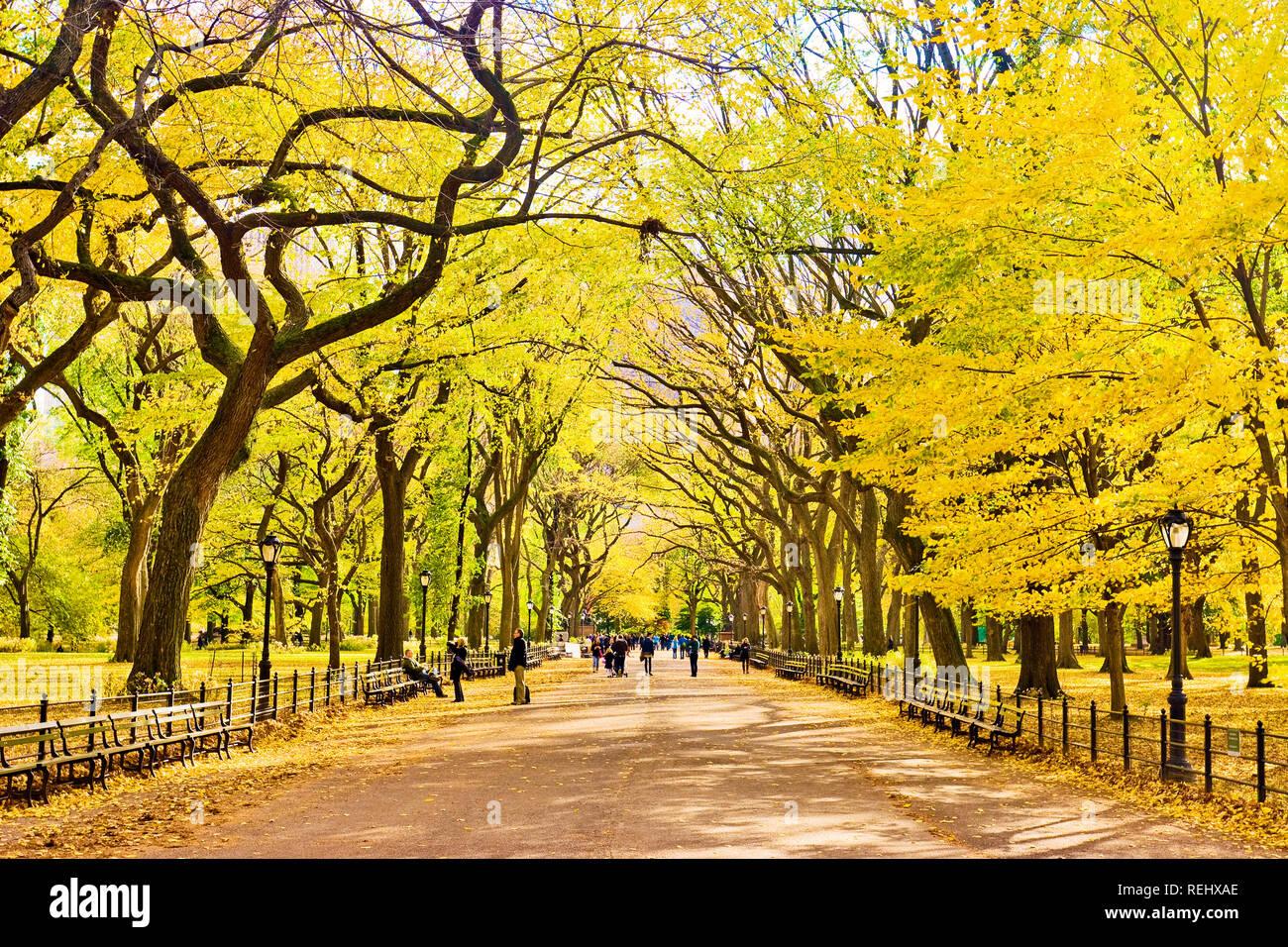 Die Mall Central Park Herbst New York City Stockbild