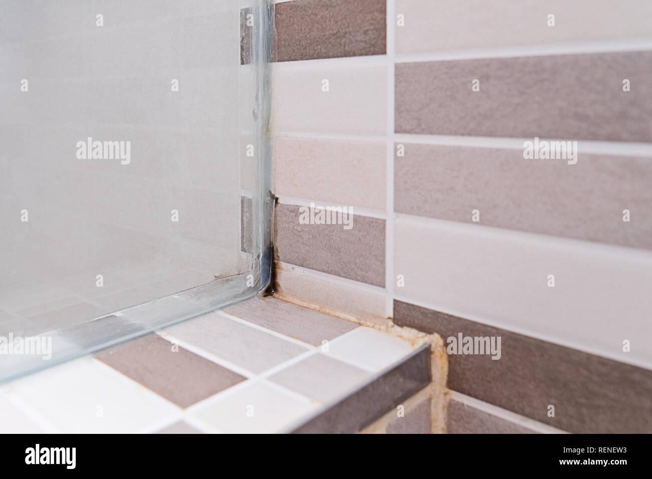 schwarzer schimmel auf den fliesen in der dusche. Black Bedroom Furniture Sets. Home Design Ideas