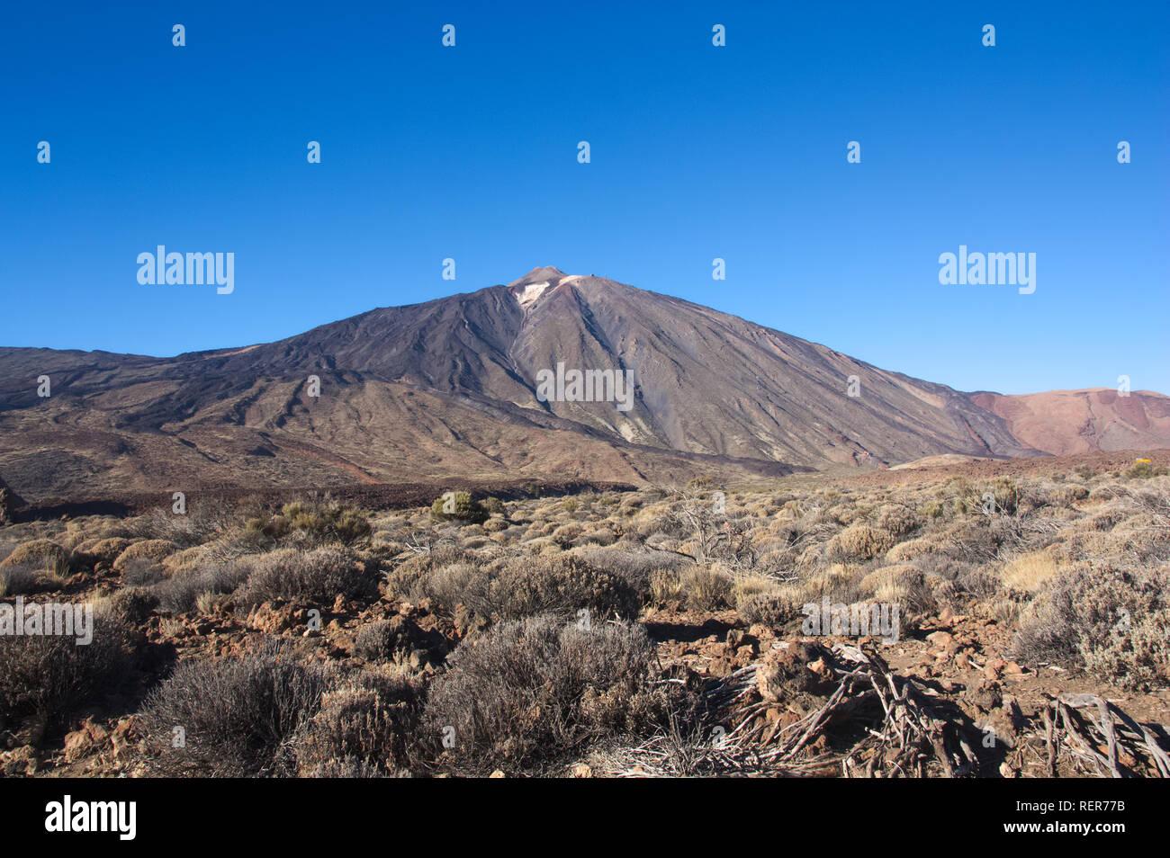 Panoramablick auf den Teide vulkanischen Gipfel, wo Sie die Vegetation, das Klima der hohen Berg untergebracht zu schätzen wissen Stockbild