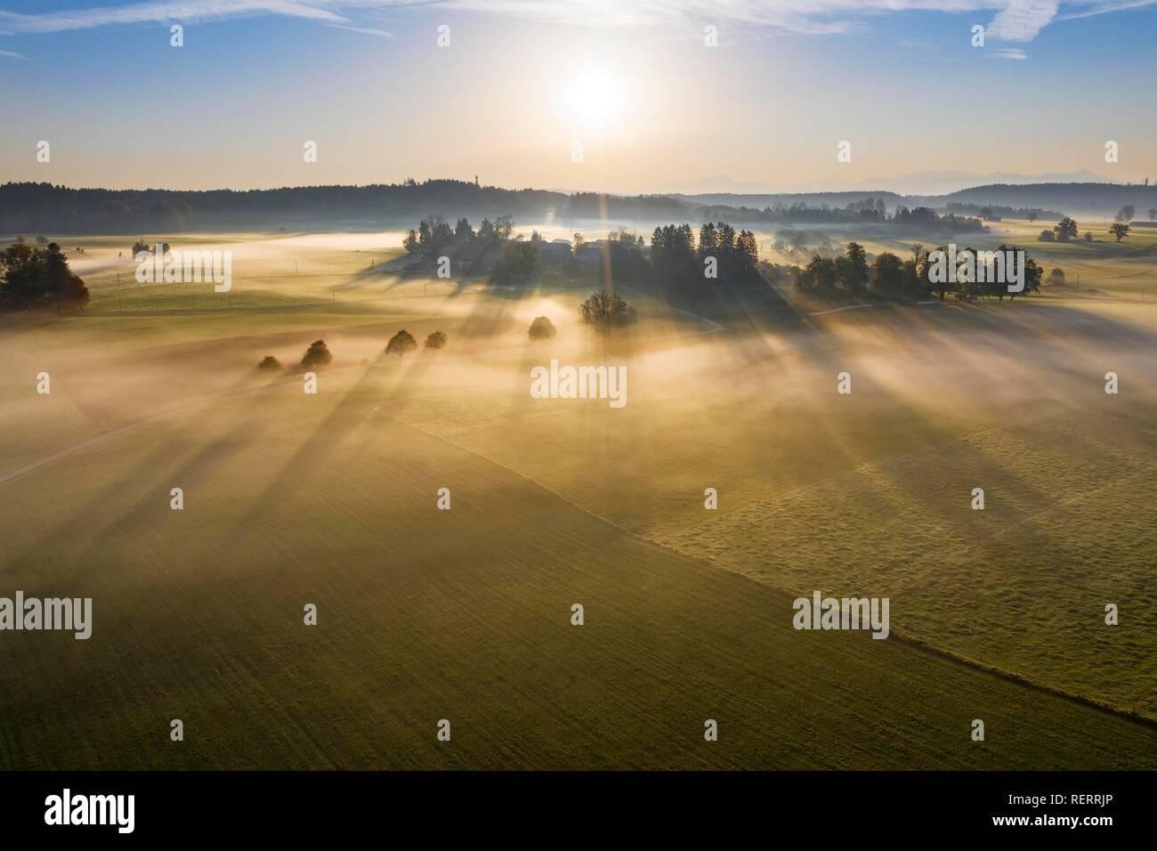 Bodennebel bei Sonnenaufgang, in der Nähe von Dietramszell, Drone, Tölzer Land, Alpenvorland, Oberbayern, Bayern, Deutschland Stockfoto