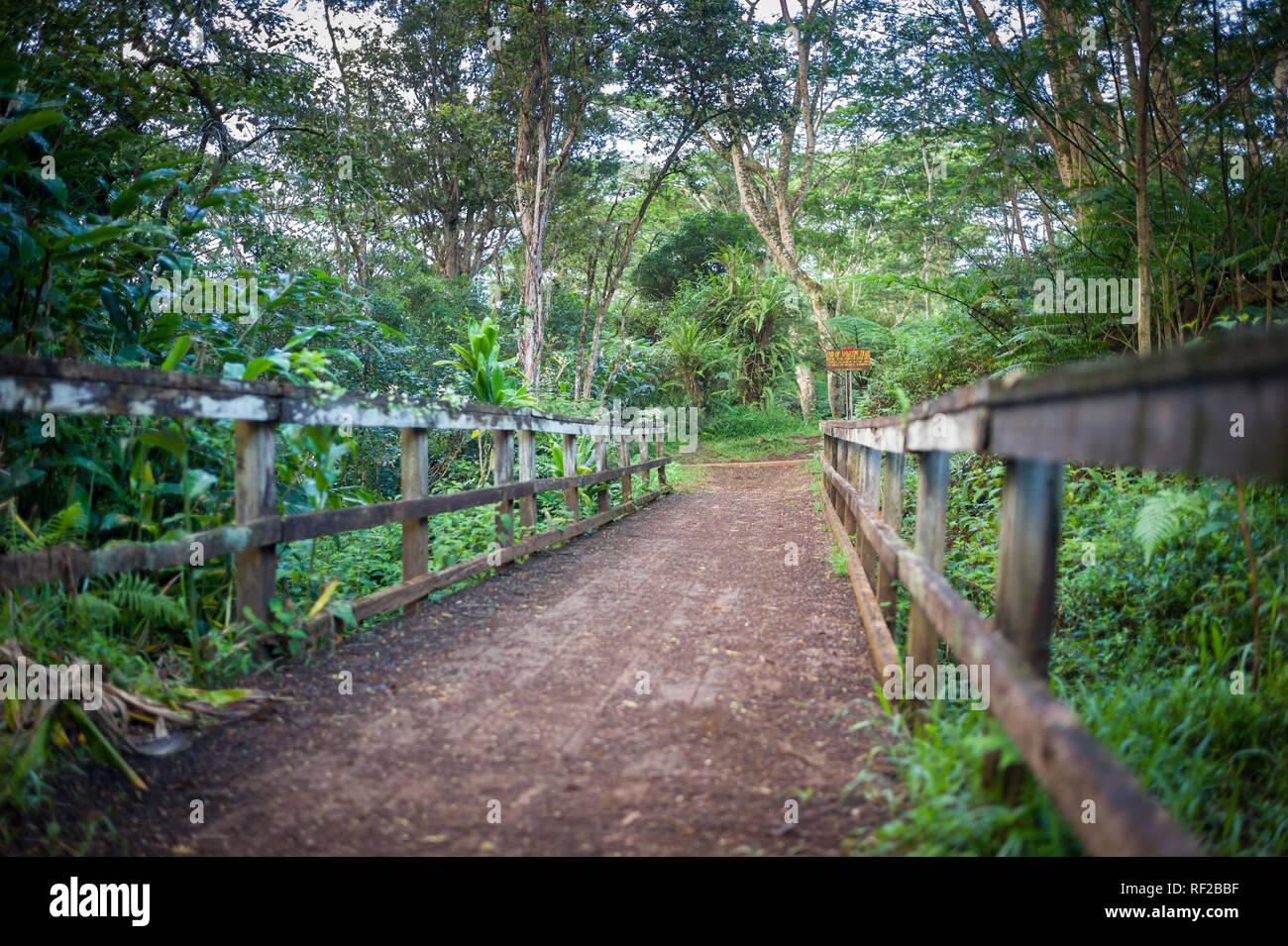 Die Kuilau Ridge Trail erforscht von Kauai scenic gebirgigen Inneren in Hawaii, United States. Stockfoto