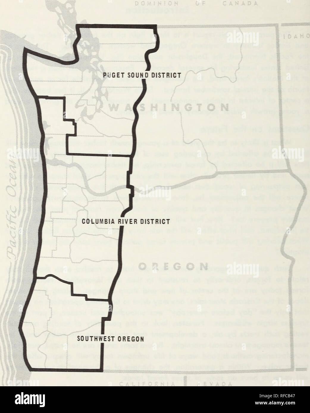 Holz Trends in der Western Oregon und Western Washington ...