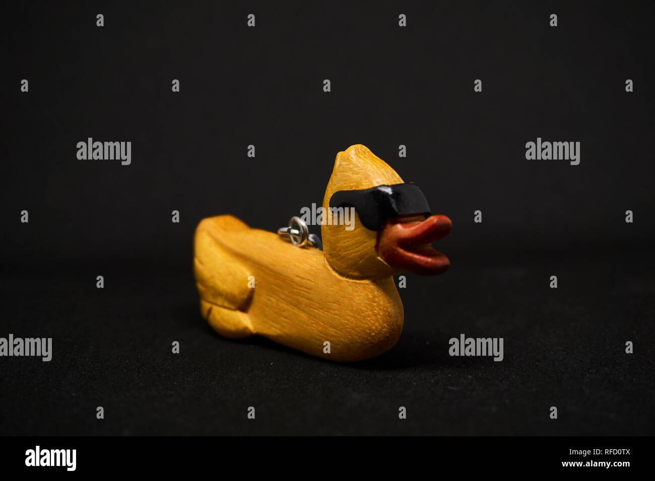 Eine Coole Ente Mit Schwarzem Hintergrund Stockfoto Bild 233240698