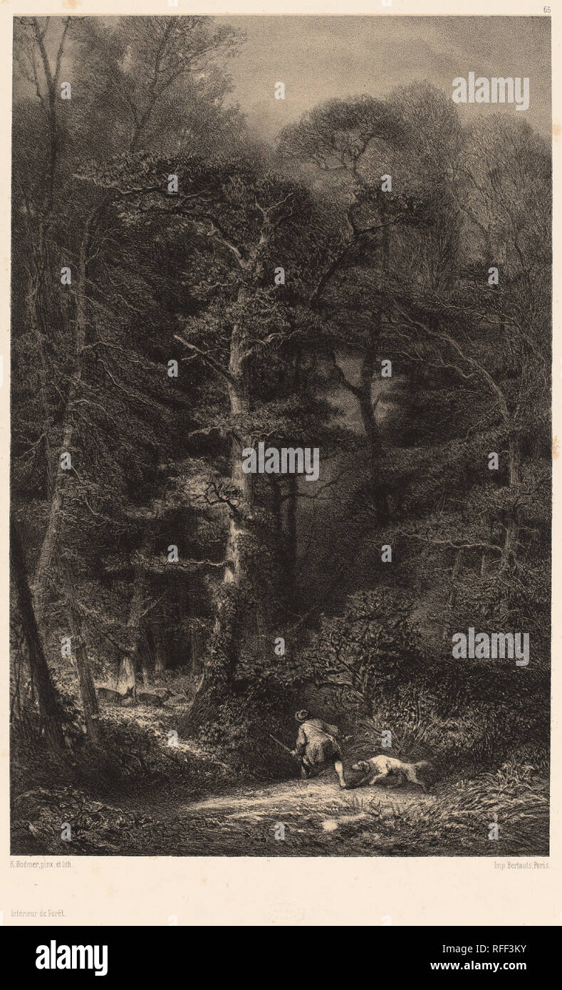 Intérieur de Forêt. Medium: Lithographie. Museum: Nationalgalerie, Washington DC. Autor: Karl Bodmer. Stockbild