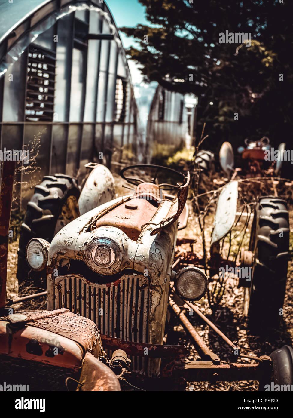 Der Friedhof von Traktoren auf der Farm meines Großvaters Stockbild