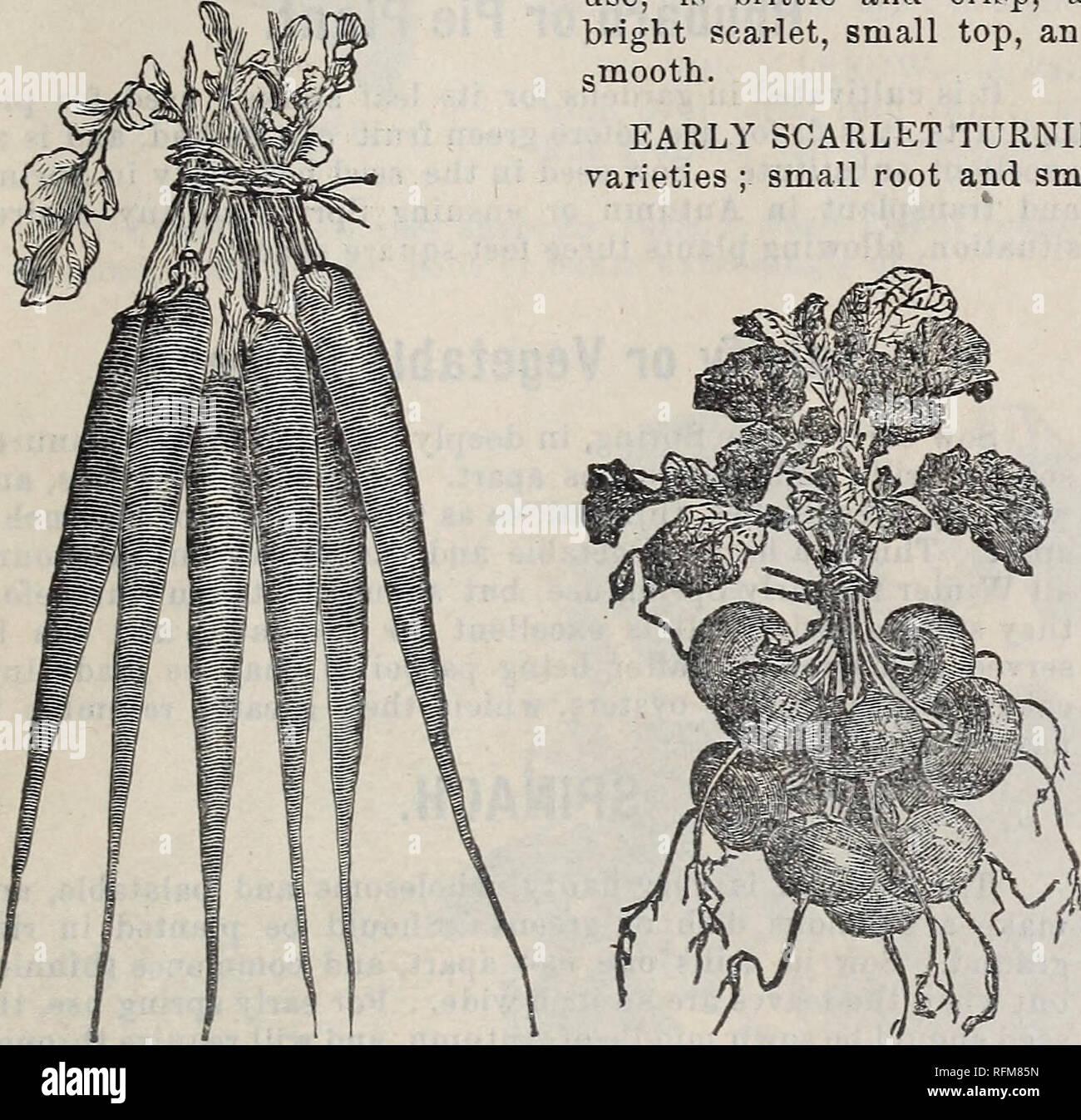 P B Vermischen Sie Sich Amp Co Almanach Und Garten Handbuch 1899