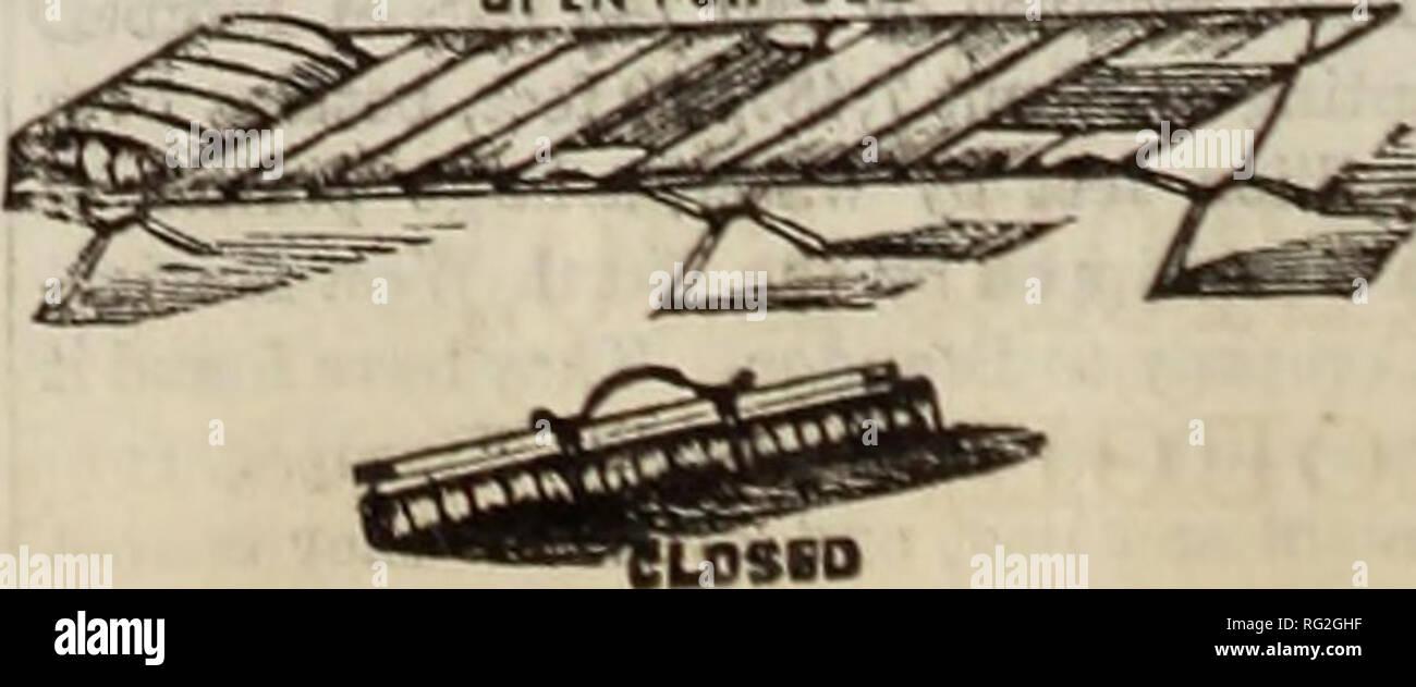 Kanadische Forstindustrie 1880 1881 Holzschlag Walder Und