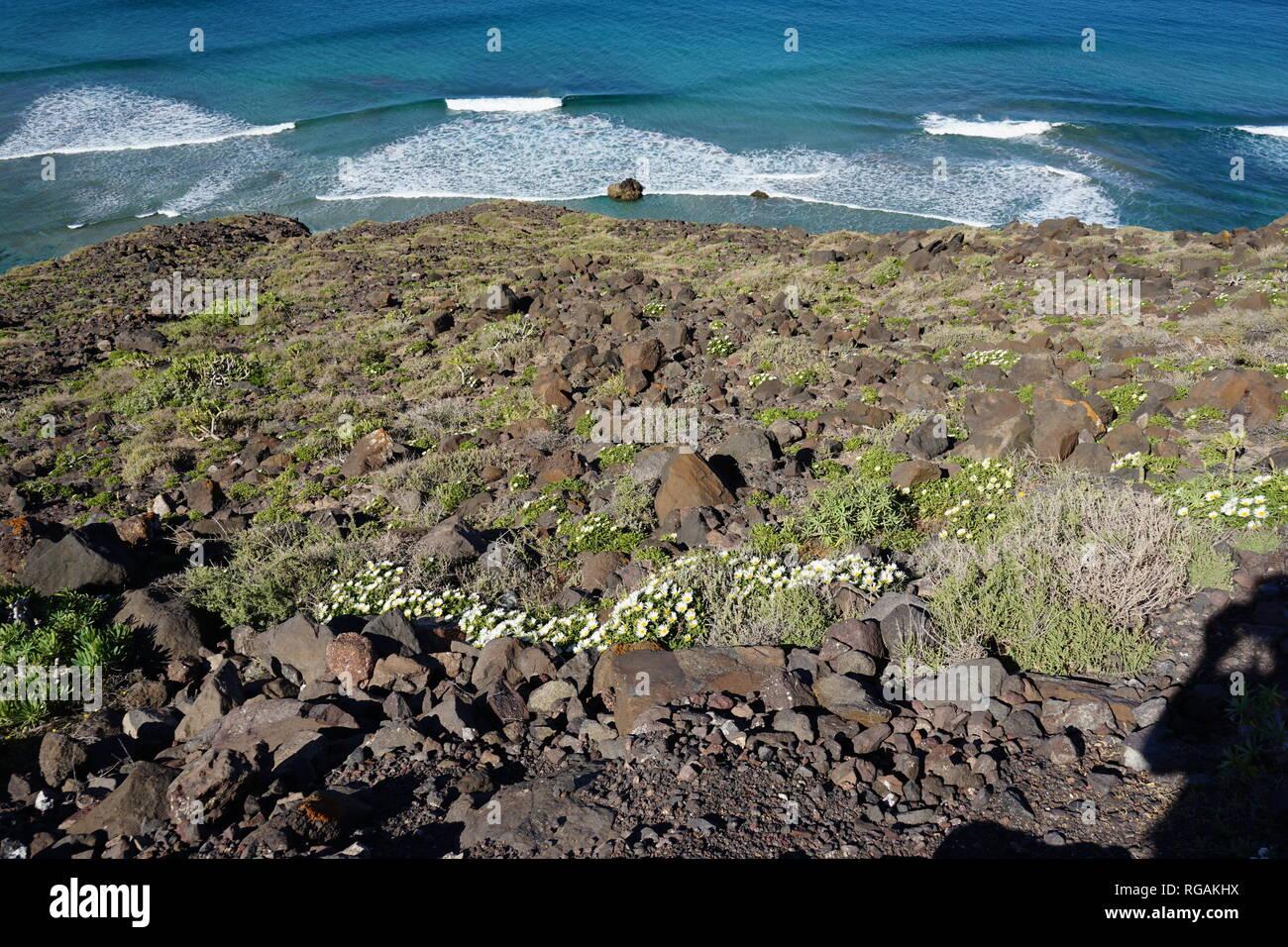 Blick von den Riscos de Famara, Lanzarote, Kanarische Inseln, Spanien Stockbild