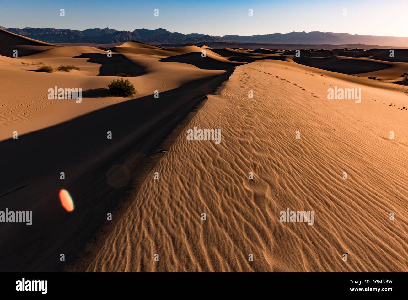 USA, Californien, Death Valley, Death Valley National Park, Mesquite flachen Sand Dünen Stockfoto