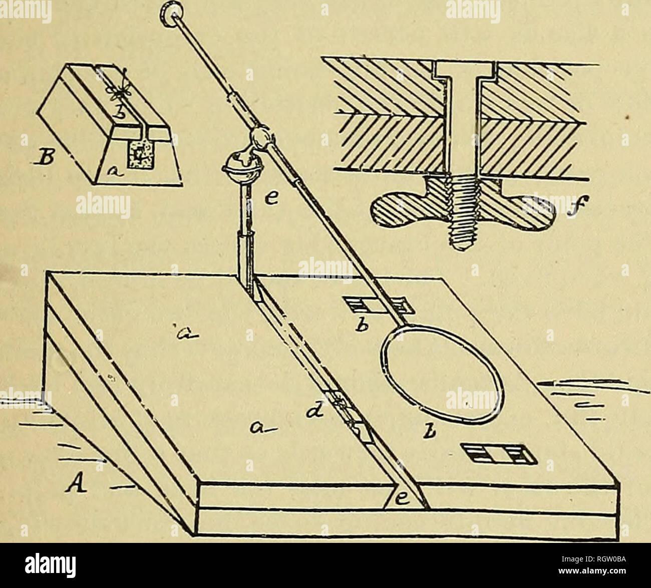 6000e028f66ddc . Bulletin - United States National Museum. Wissenschaft. Abb. 107.-  Ausbreitung - Fall (Original). B und die Unterstützung mit ...