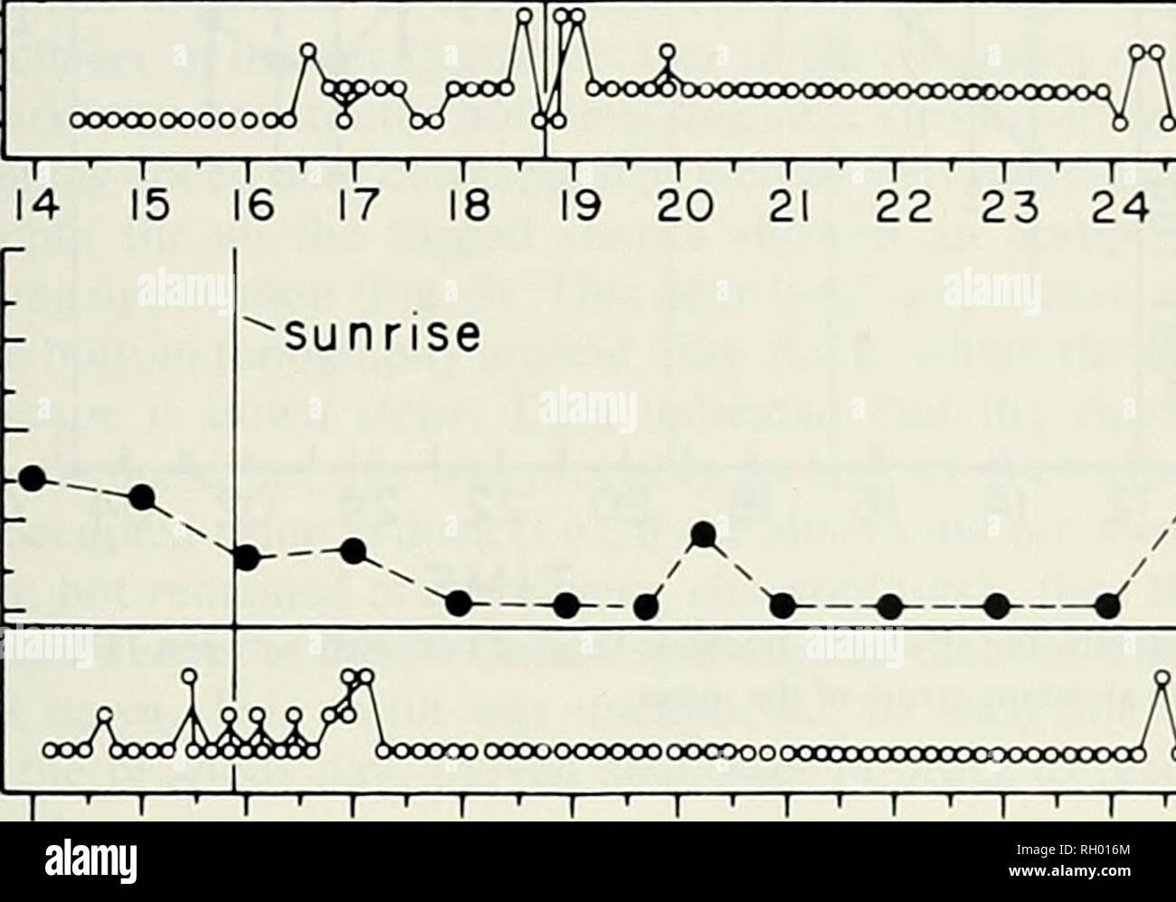 . Bulletin. Wissenschaft; Naturgeschichte; Natural History. ANGEL SHARK VERHALTEN 197 q; 1000 CO Z) crO 750 UJ ICH tLcr^°°^^ 250 SPEED 3 - KLASSE 2 - ENGEL HAI SCHWIMMEN PREISE Sonnenuntergang -_^^ Rate // // 750^1000 crO LlJ X I - 500 UJ LL-S^250 0 4-SPEED 3: Klasse I-. O OOODOOOOO 19 20 21~i - '-I-'-I-' -r- 22 23 24 01-1-I-I 02 03 OCXJOOOOOOO OOOOOOI-1 - - - n - Ich - ich -> - I - '-I-' -|- 03 04 05 06 07 08 09 ~ i-II n 10 - 13 14 15 1 16 Zeit Abb. 4. Schwimmen speed Daten im lO-min Intervallen von einem 5. catifornica mit einer 1-Kanal Sender markiert. Speed Class 1. 0-15 cm/Sek; 2, 15-50 cmyse Stockbild