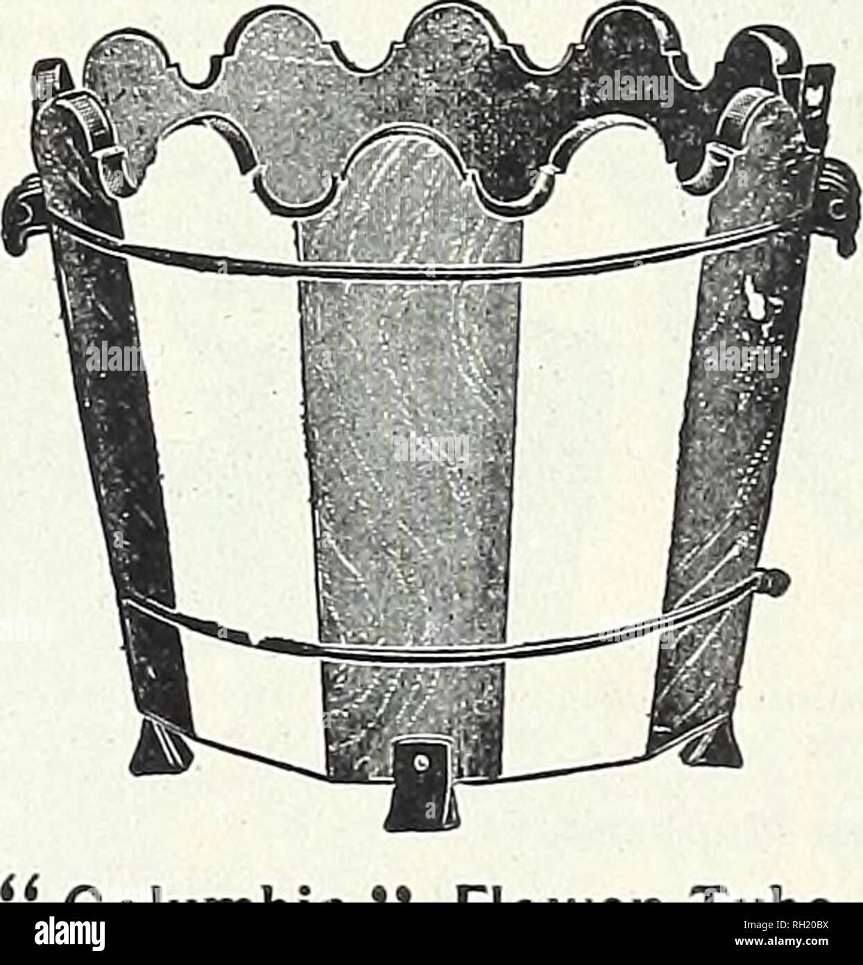 Poster oder Leinwand Bild T Kowak Pflanzen Topfpflanze Malerei Creme C0ND