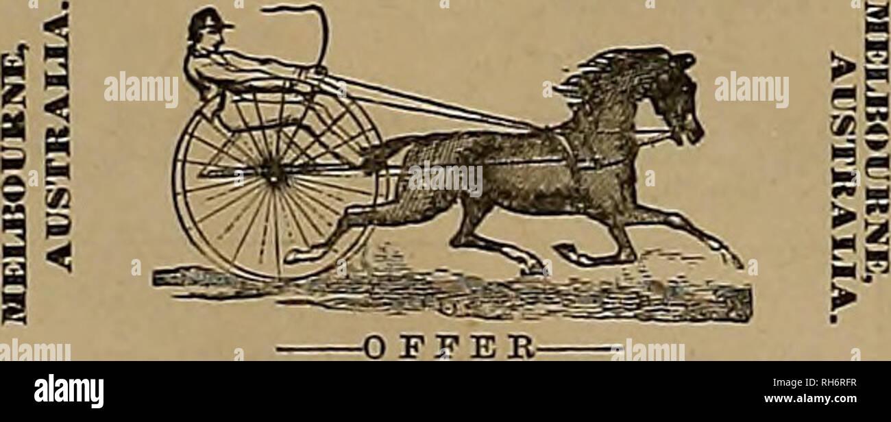 7f13717bb3c99b Züchter und Sportler. Pferde. ANT STTLE auf Bestellung gefertigt ...