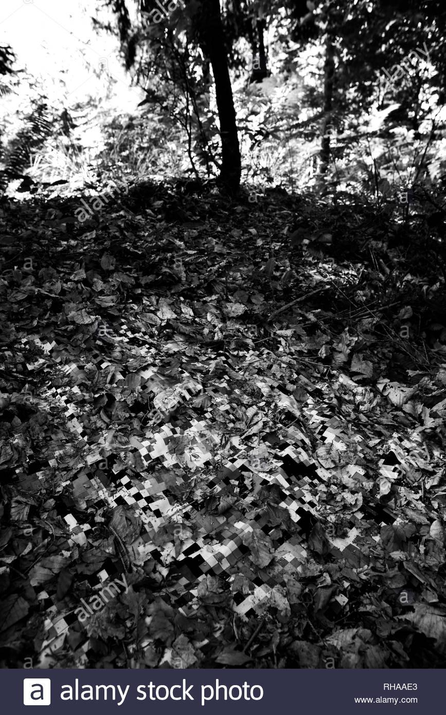 Virtueller Wald Stockbild