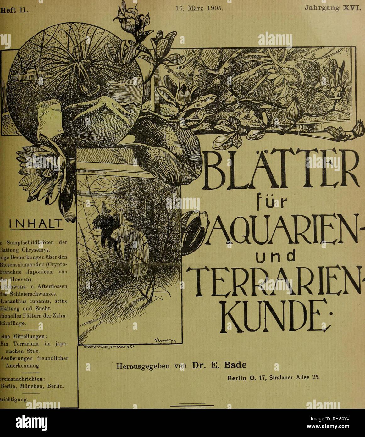 Blätter Für Aquarien Und Terrarien Kunde Heft 11 16 März 1905