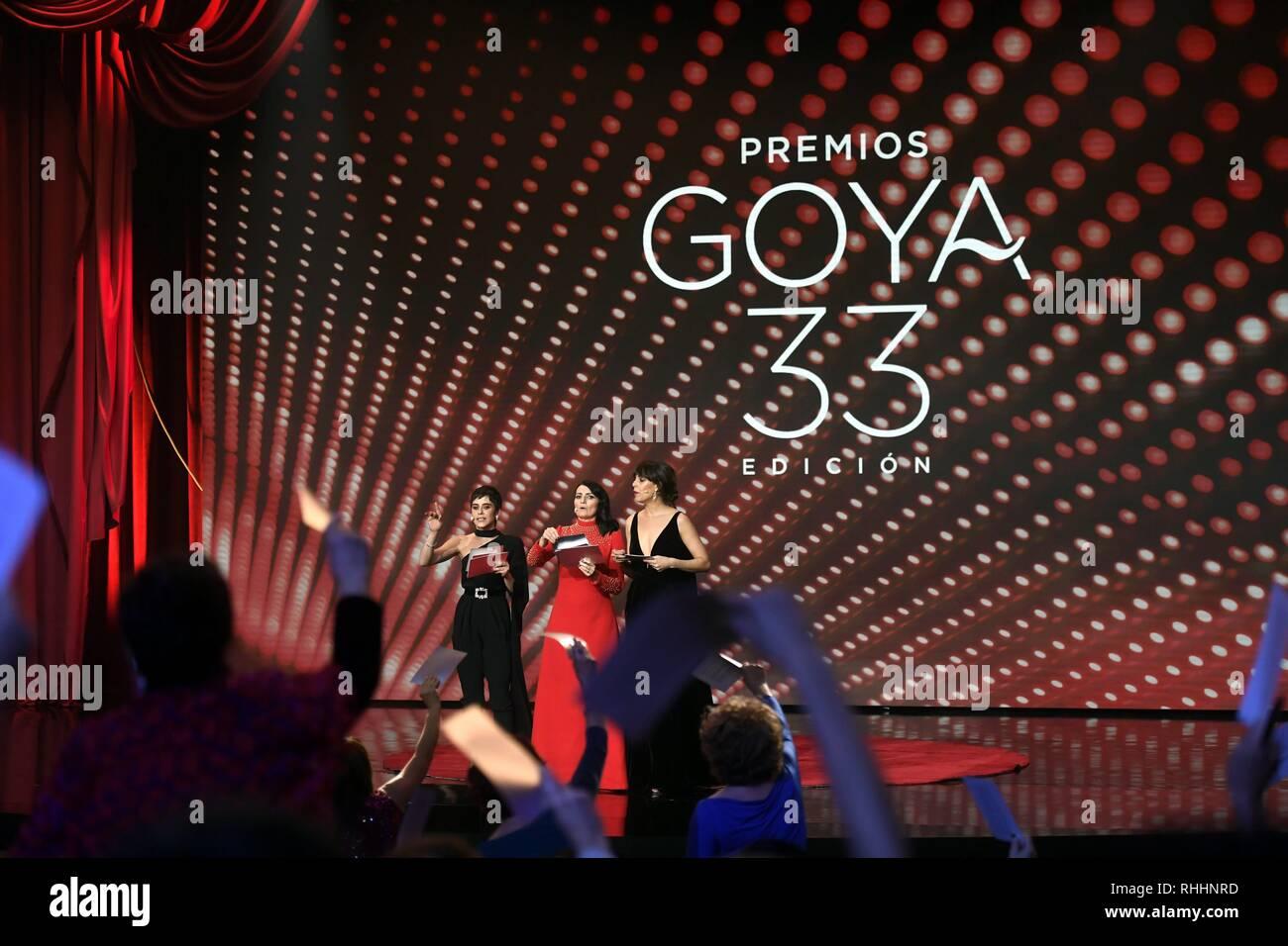 Sevilla, Spanien. 2. Feb 2019. Zeremonie der Etagen 33 jährliche Goya Filmpreis in Sevilla, am Samstag, den 2. Februar, 2019. Credit: CORDON PRESSE/Alamy leben Nachrichten Stockfoto