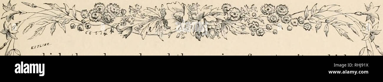 Stoffblumen LiebenswüRdig Bild Gewölbtes Glas Antiquitäten & Kunst Volkskunst
