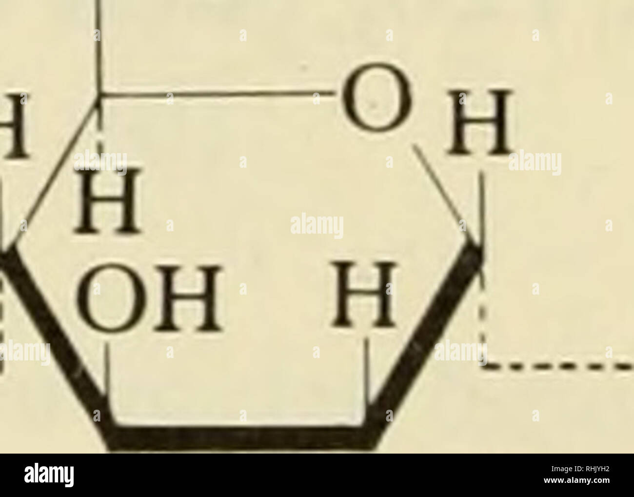 Biophysikalische Wissenschaft Biophysik O L Q Oh H Oh 5