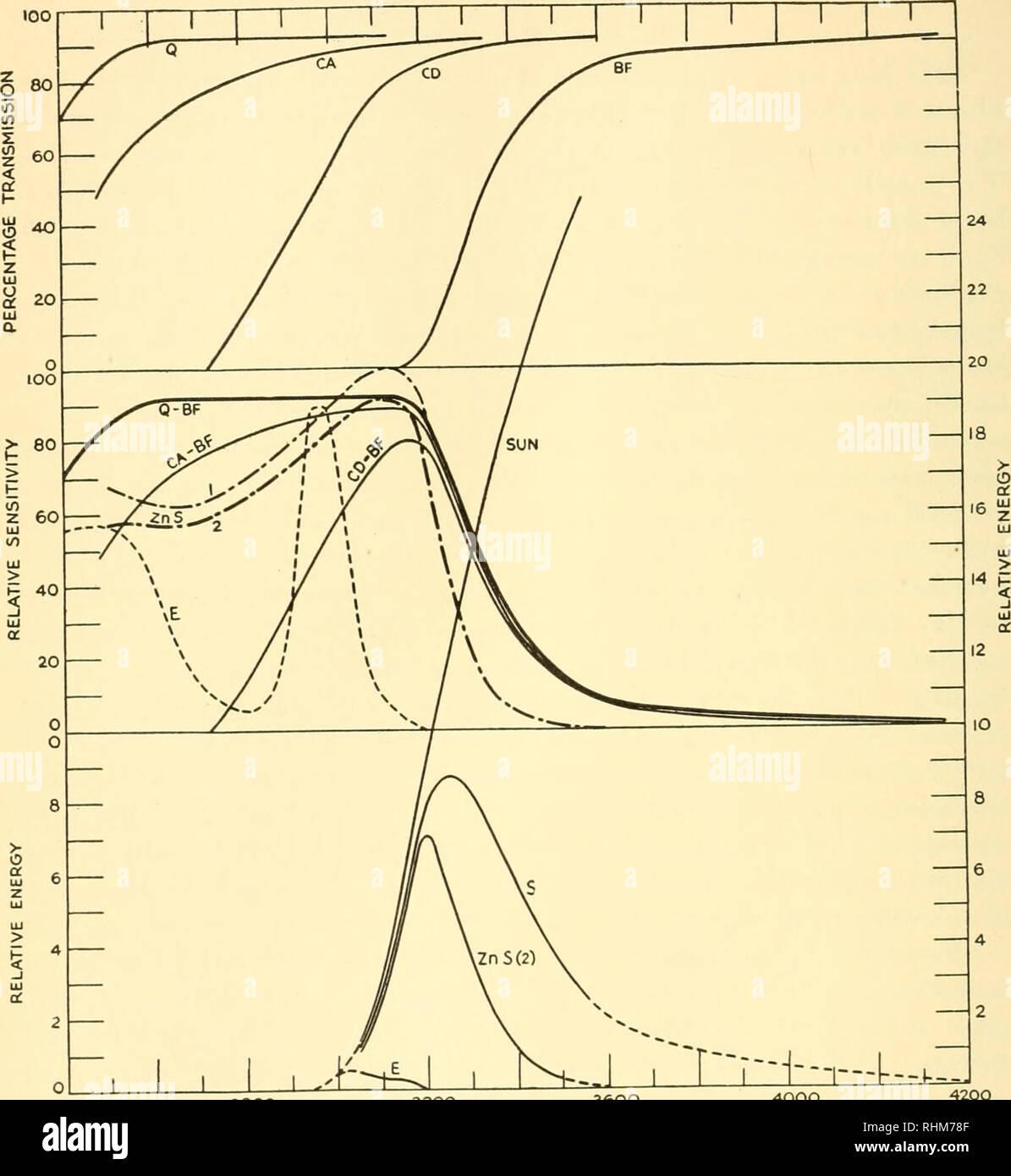 unterschied mitose meiose tabelle