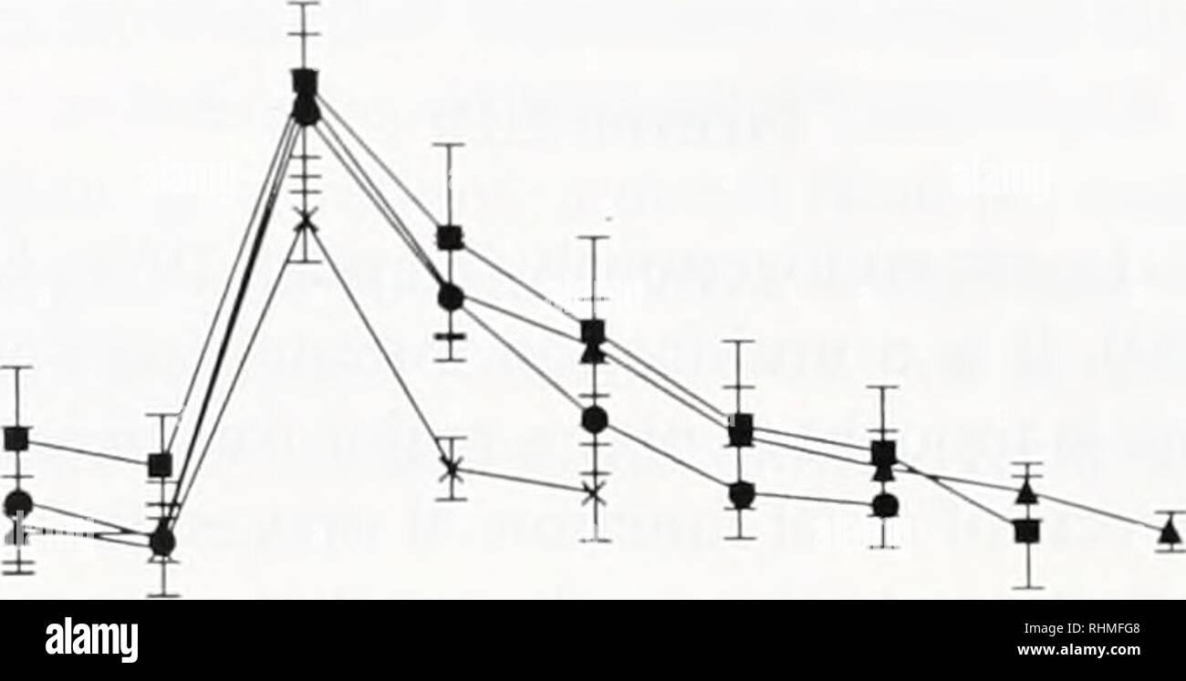 . Die biologische Bulletin. Biologie; Zoologie; Biologie; Meeresbiologie. 272 A. ALEVIZOS ET AL. Aktivierung des R15. Ein Beispiel für diese synaptischen Dekrement ist in Abbildung 2 dargestellt, für den R15-R25/L25-Verbindungen. Die Verlängerung der R15 burst Zeitraum von mehr als 10 min. hat keine Auswirkungen auf die Anregung des R25/L25 Zellen. Die Tatsache, dass die Reaktion der R25/L25 Zellen zur direkten Anwendung ofR 15 al Peptid sinkt in einer ähnlichen fash-ion gegen Depression release sein kritisch für das Dekrementieren der synaptischen Übertragung argumentiert. Zudem hat der R25/L25 Zellen normalerweise reagieren auf einen anderen excita Stockbild