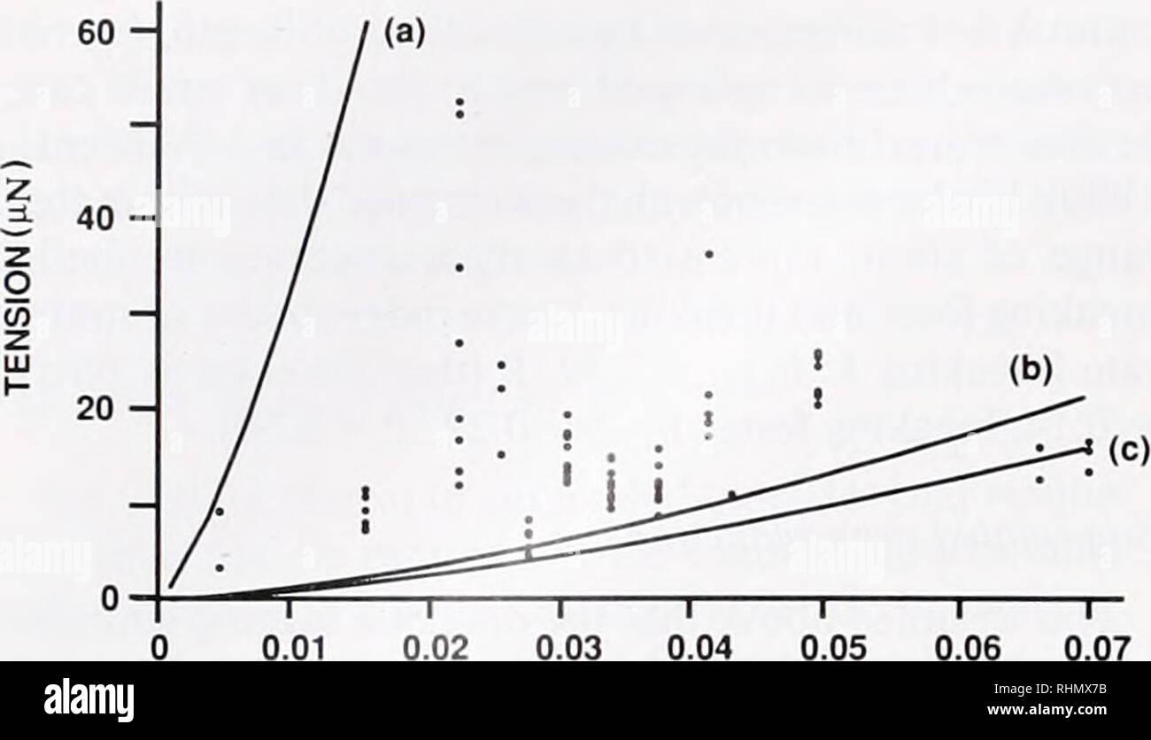 Warum kann nicht radiocarbon-Datierung verwendet werden, um das Alter von Gesteinen direkt zu bestim