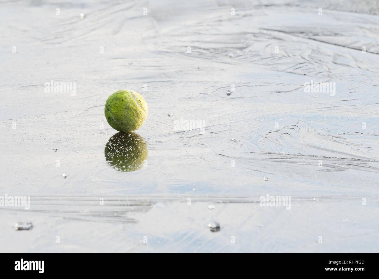 Ball auf Eis - der Hund Tennis ball auf gefrorenen Teich- auf die Gefahren von Hunden auf gefrorenes Wasser läuft veranschaulichen Stockbild