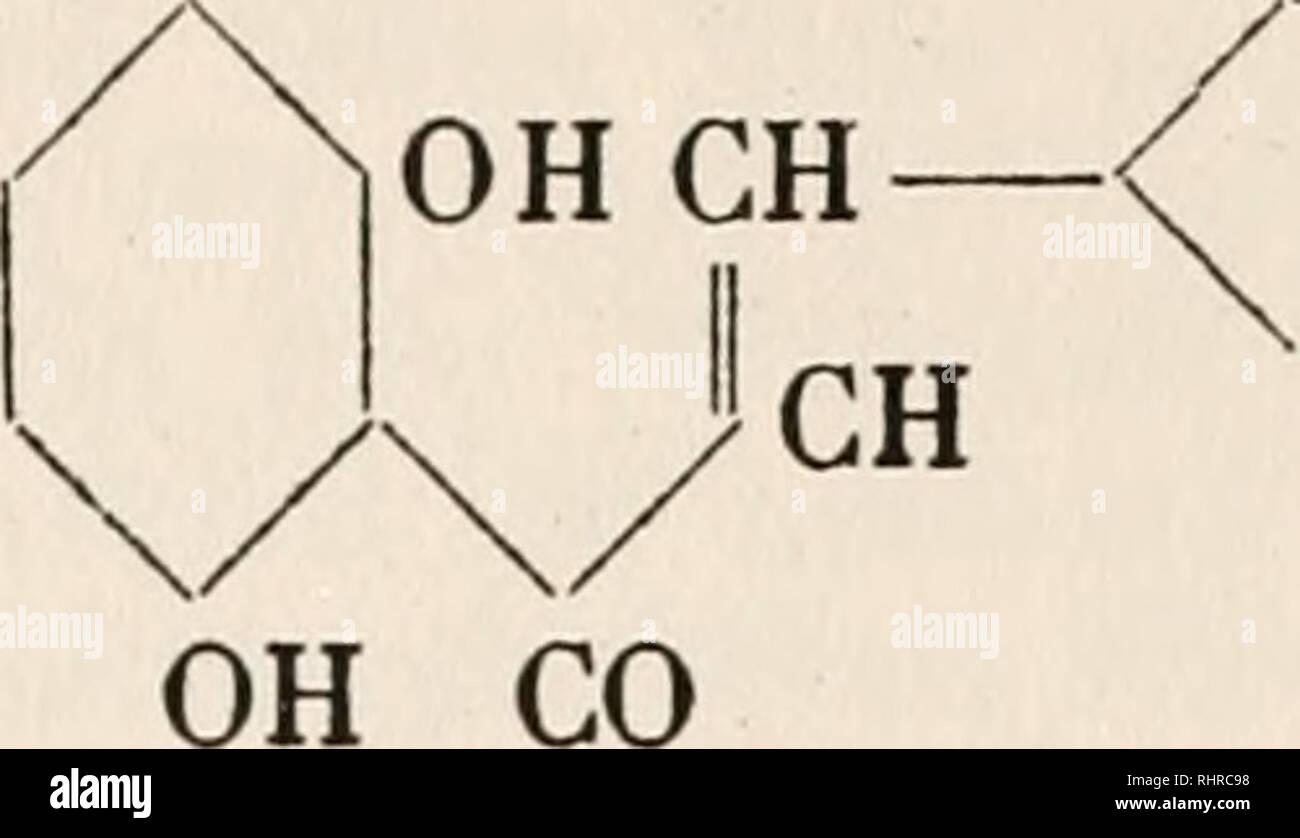 Biochemie Der Pflanzen Pflanzenphysiologie Botanische
