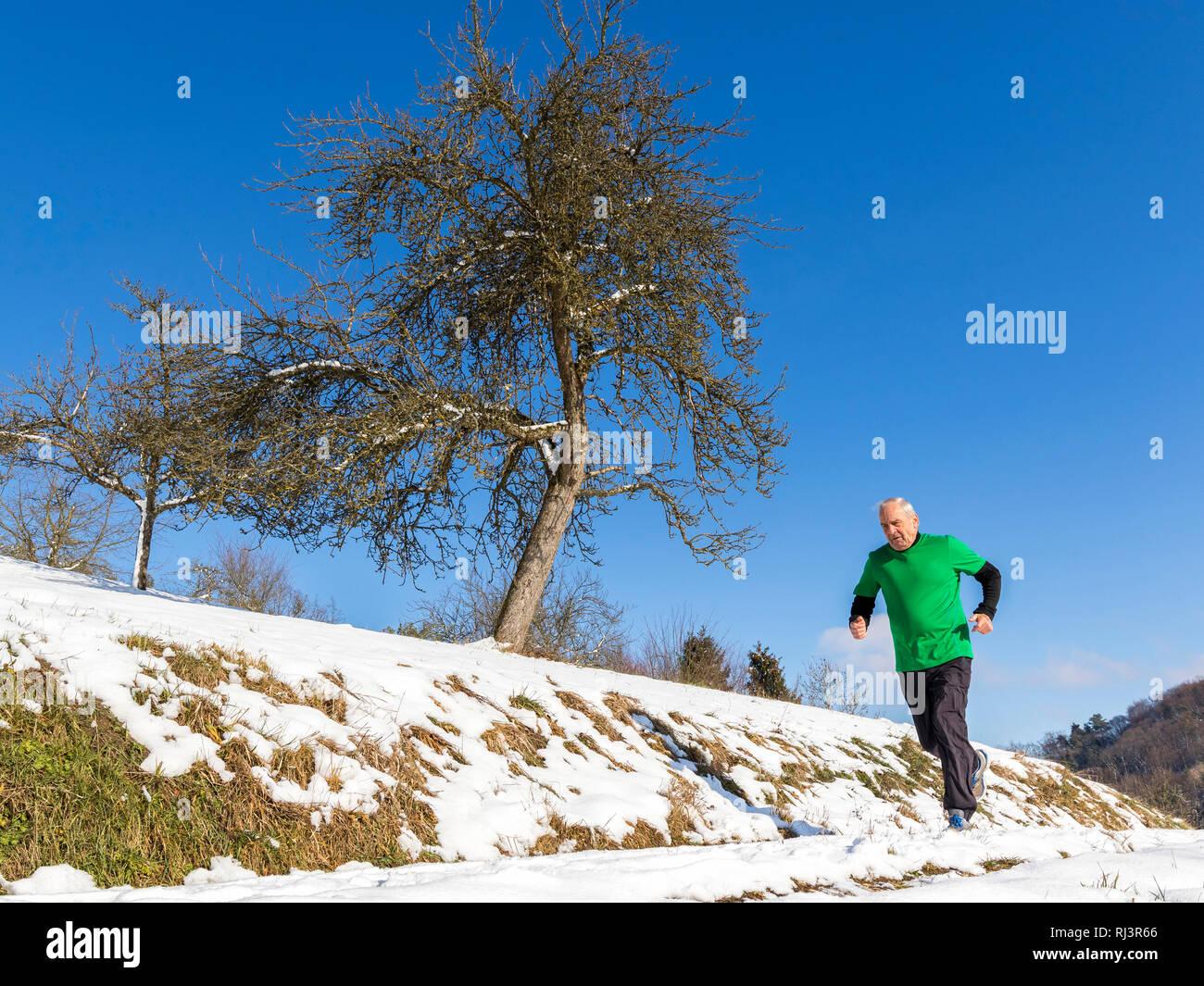 Senior, 70 - 80 Jahre, Kaukasisch, joggen, Schnee Stockbild