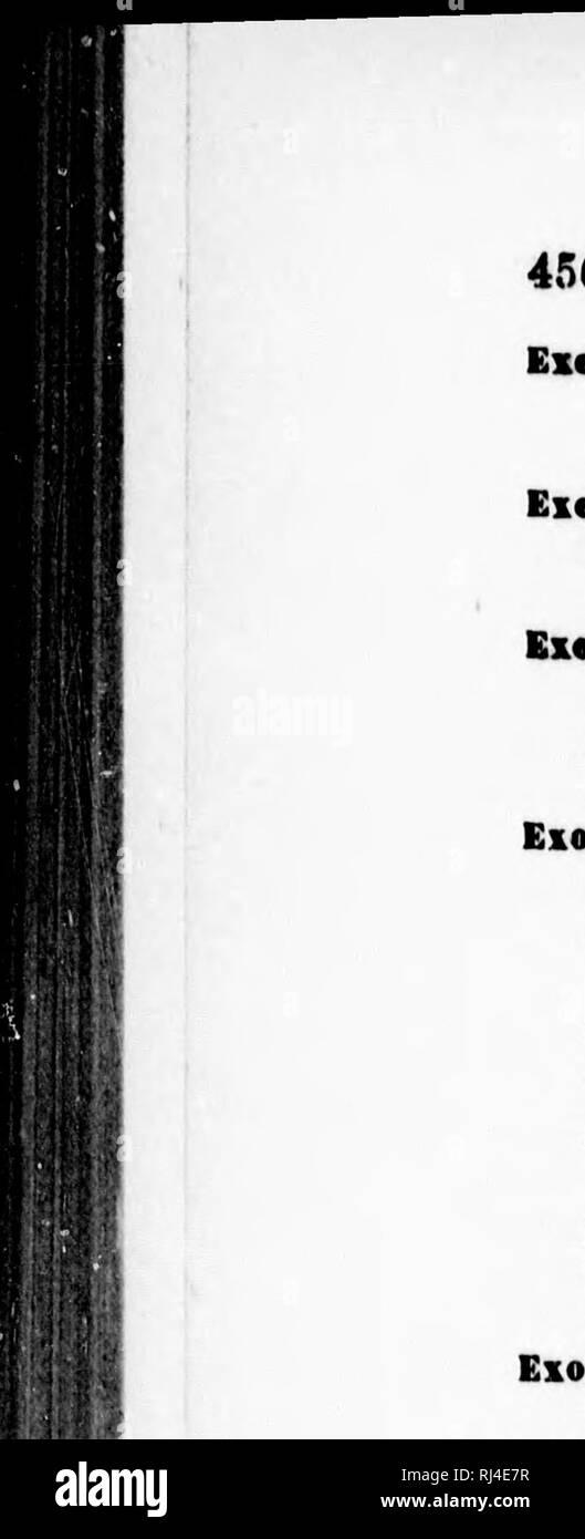 ". Ergänzungen und Korrekturen à la faune hyménoptà © rologique de la Province de QuéBec [microforme]. Hyménoptères; Hymenoptera. 456 TABLà ALPHABÃTIQUE DES NOMS DE GENRE ET D'eSPÃCES Pro7. =: ceratosoma Exatastci Rufus, rufa. snavcoloDs, Walsh, 384. ElcnteruB, Hart. 796; Ad. 104, 887 oauadensis, Prov. 79 d. Hull"" ii. sis, Prov. Ad. 104. ExtchilMM, Wesiu. 35 S; Ad. 7d. fuscipeiine, Nort. 355. mutiduiii, 8AY, 354. nigruai, Prov. (Anomalon) KÖ. T %, Exocbu§, Grnv. 436; Ad. 113. albil"" Nicolas, Waloit, 438. annulienis, Walsh (Prov.) = c! bi-frous. Fulvipes, Kresse. 437. lÅvis, CreuH. 437. propinquus, Cr Stockbild"