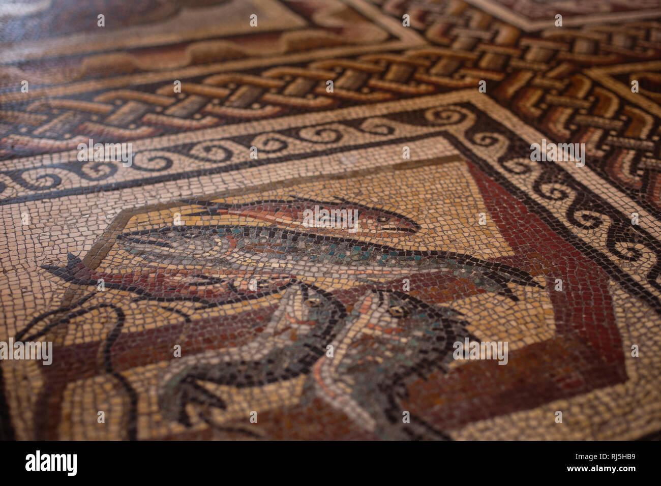 Fußboden Im Petersdom ~ Europa italien latium rom vatikan fußboden mosaik in den