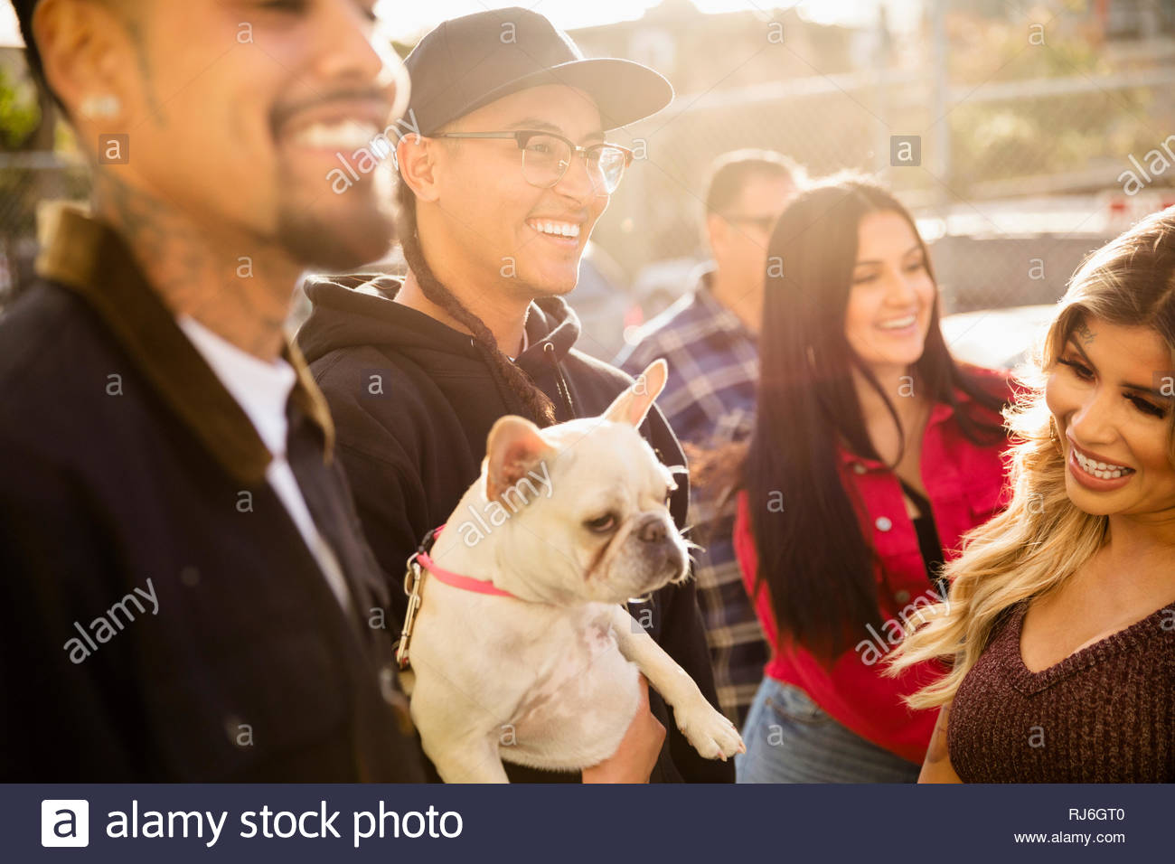 Latinx Freunde mit Französische Bulldogge heraus hängen Stockbild