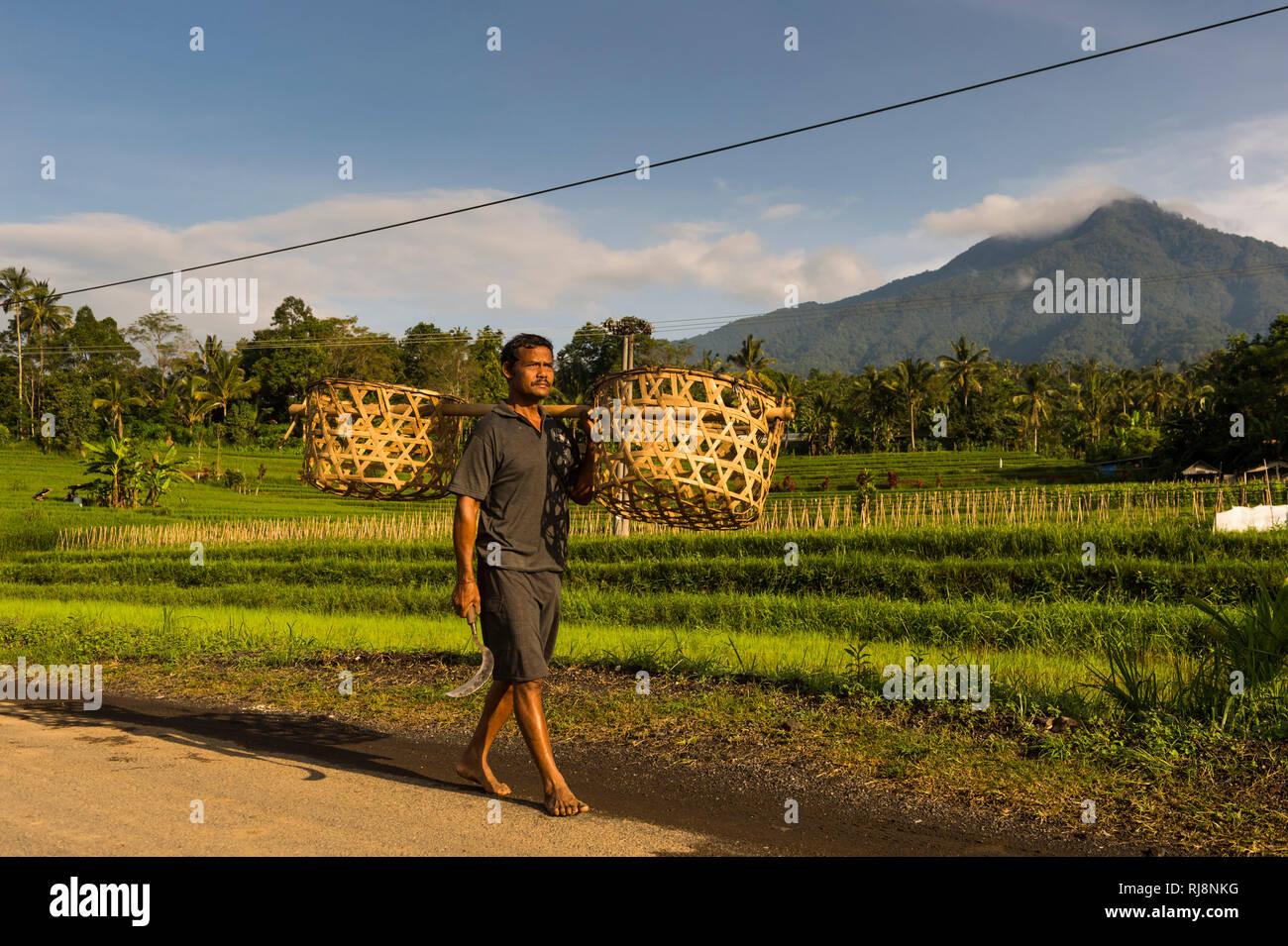 Mann trägt Körbe, im Hintergrund der Berg Gunung Batu Karu Stockbild