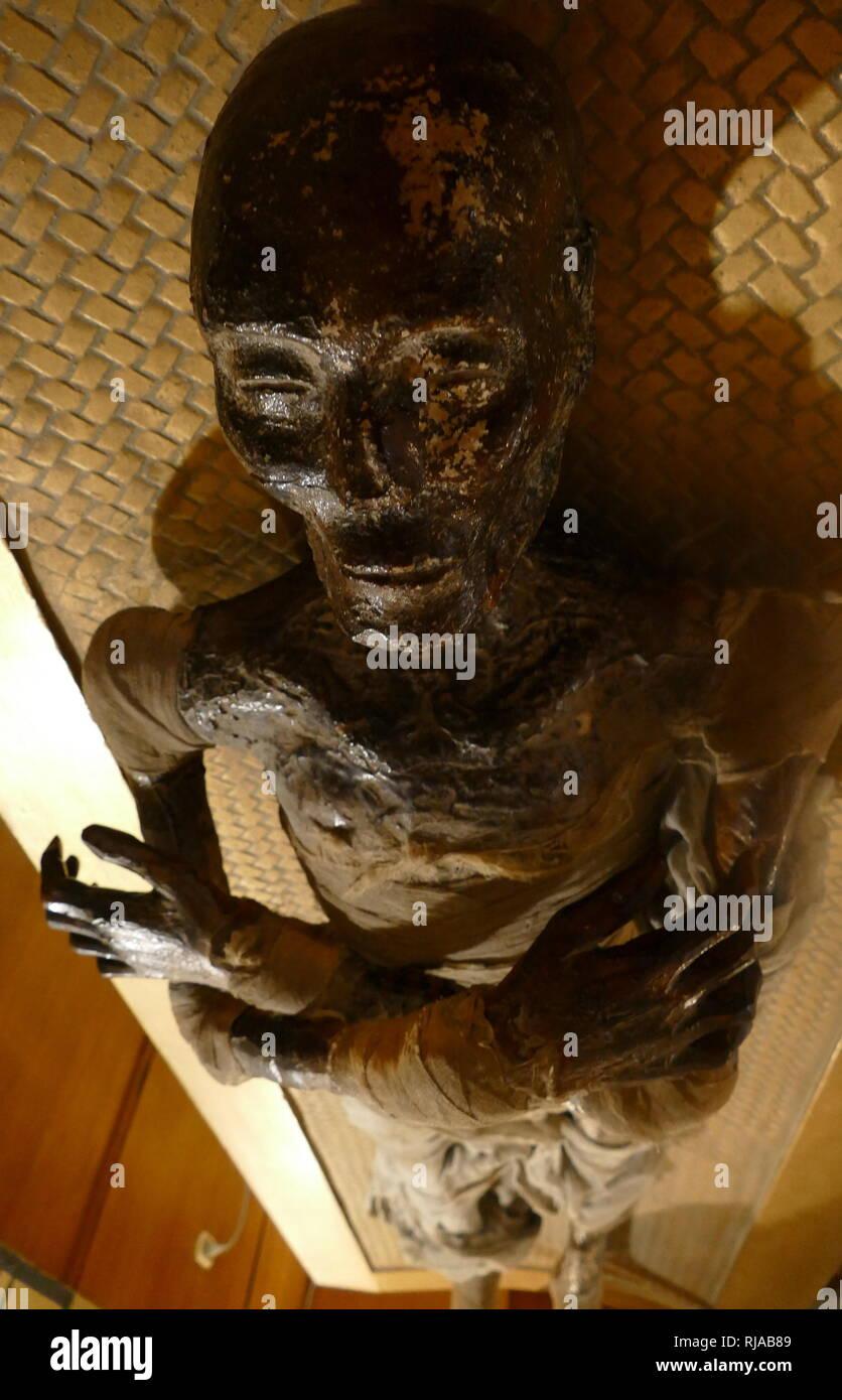 Zucker-Mumien datiert Verein